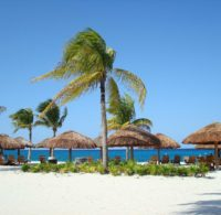 与小屋和棕榈树的泰国海滩。